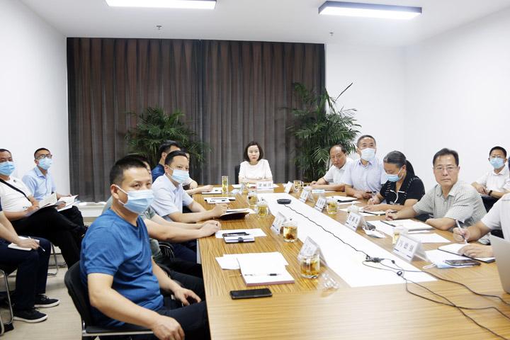 王莽岭景区运营策划及承载量规划方案视频汇报会召开