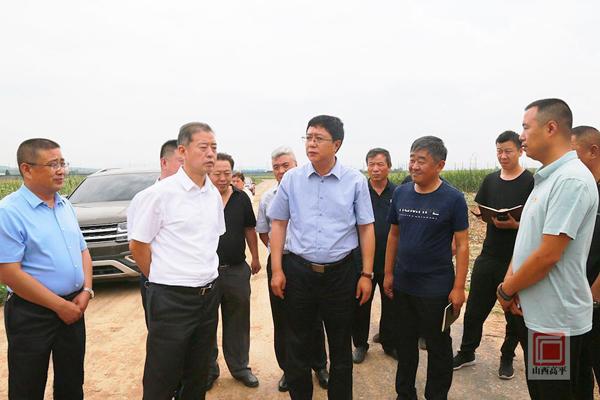 """""""原?。鹤鰪娮龃笊i產業是高平農業產業第一大任務"""