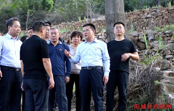 窦三马在阳城县蟒河镇调研农林文旅康产业融合发展